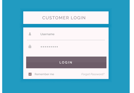 E-commerce store login